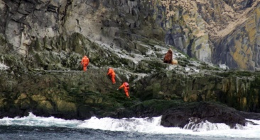 Biologists land on a sea lion site to collect any scat samples